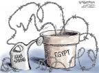Nick Anderson  Nick Anderson's Editorial Cartoons 2012-12-09 democracy