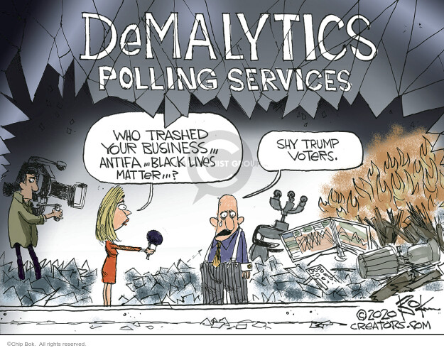 DeMalytics Polling Services. Who trashed your business … Antifa … Black Lives Matter … ? Shy Trump voters.