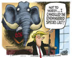 Mike Peters  Mike Peters' Editorial Cartoons 2018-08-10 editorial
